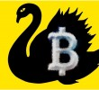 Is Bitcoin a Black Swan Event?