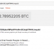 Search Engine DuckDuckGo Now Lets Users Check Bitcoin Balances