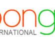 Merchant Highlights:  Bongo International, Reelhouse and Mercury One