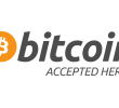 What is Bitcoin, Blue Chip or Ponzi Scheme?